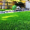 Рекомендації по закладці нового газону