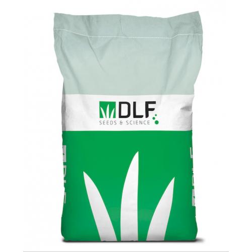 Газонна трава Костриця червона DLF Trifolium MAXIMA 1 кг (на вагу)