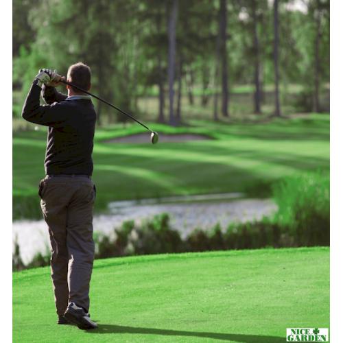 Газонная трава для гольф полей DLF Trifolium Гольфмастер 10 кг