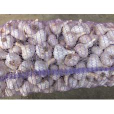 Чеснок Любаша 30/40 мм 5 кг