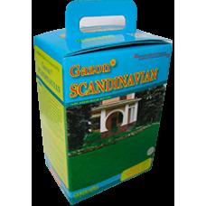 Газонна трава Rasenlux Скандинавський газон 2 кг