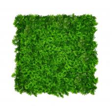 Декоративное зеленое покрытие Engard Мох 50х50 см (GCK-14)