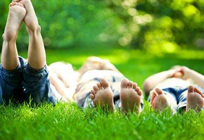 Идеальная газонная трава для всей семьи от интернет-магазина «NiceGarden»